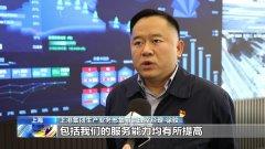 连续四年突破4000万标箱,上海港集装箱吞吐量创新高