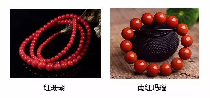 红珊瑚VS南红玛瑙