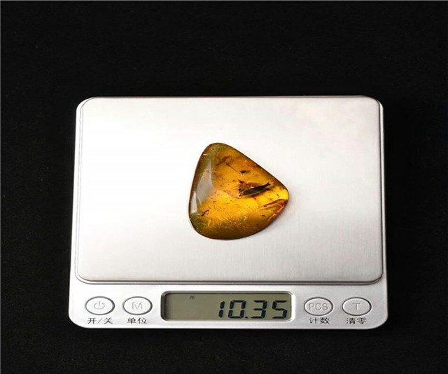 天然虫琥珀价格多少元
