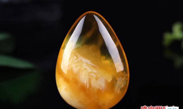 金绞蜜和蜜蜡哪个好?