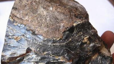 墨西哥琥珀原石价格多少钱一克,你知道吗?