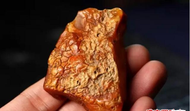 俄罗斯琥珀原石多少钱一克,你想知道的都在这里!