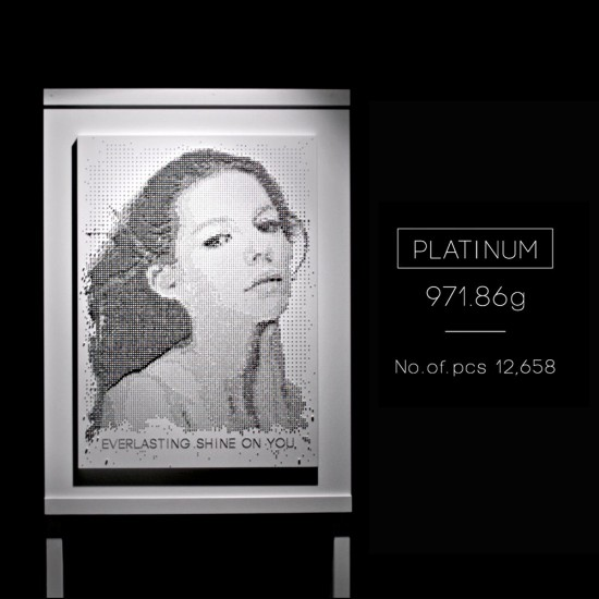 价值50万美元的铂金肖像画