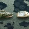 Cartier:鳄鱼的诱惑-珠宝首饰展示图【行业经典】