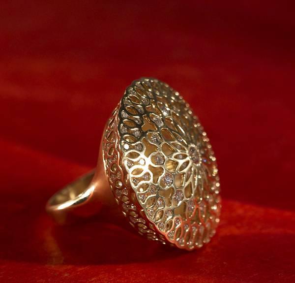 2010 Saul Bell 珠宝设计获奖作品(Gold/Platinum)-创意珠宝
