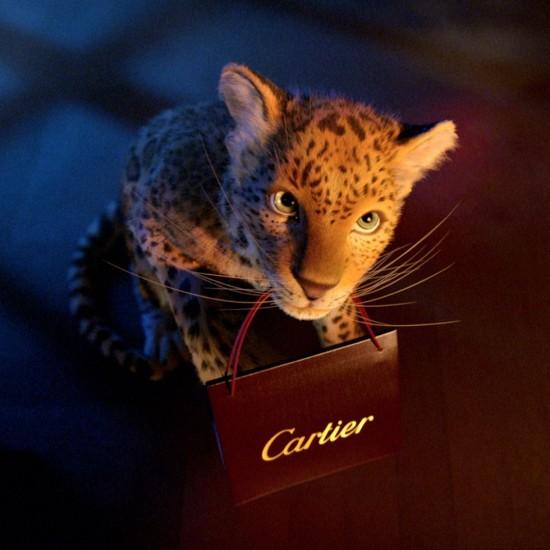 "Cartier 2013""Winter Tale""动画宣传片-珠宝首饰展示【行业精选】"