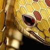 宝格丽(Bulgari)Serpenti系列主题展览