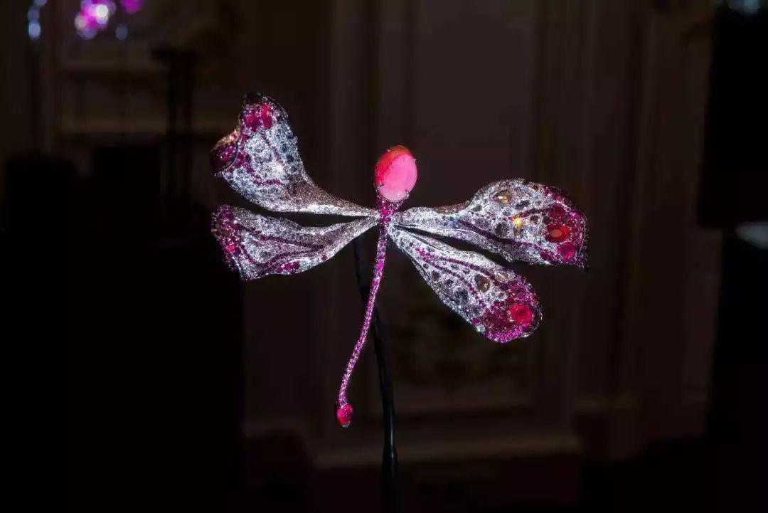 孔克珠首饰设计