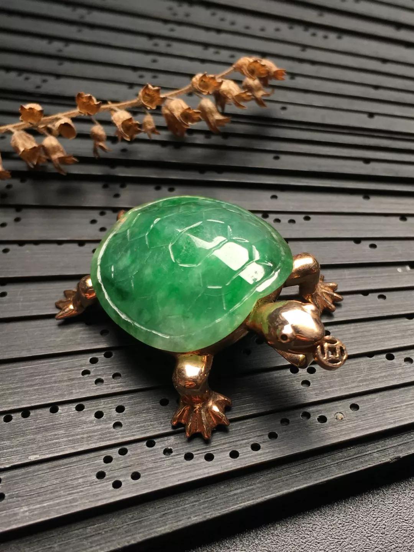 翡翠金钱龟
